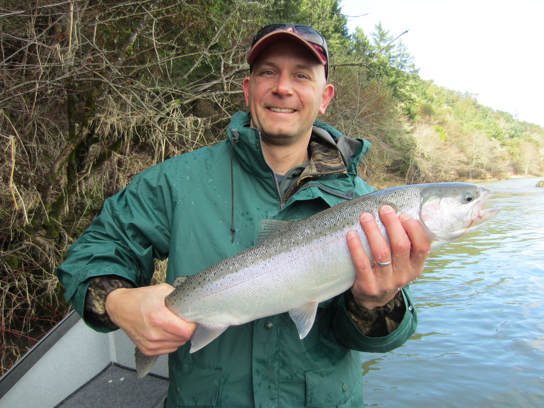 South Umpqua Wild Steelhead